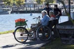 seniors bike