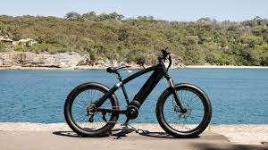 Skillion Max Classic E Bike