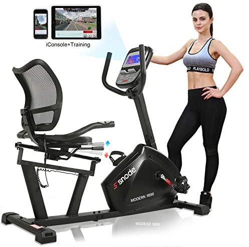 SNODE Magnetic Recumbent Exercise Bike, Indoor Home Training Machine with High Resistance, 3PC Crank for Better Workout